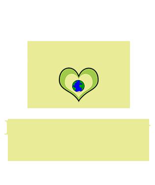beginner's way coaching